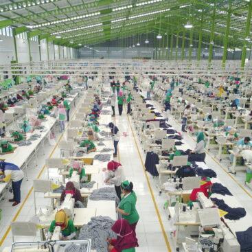 Factories in China & Vietnam